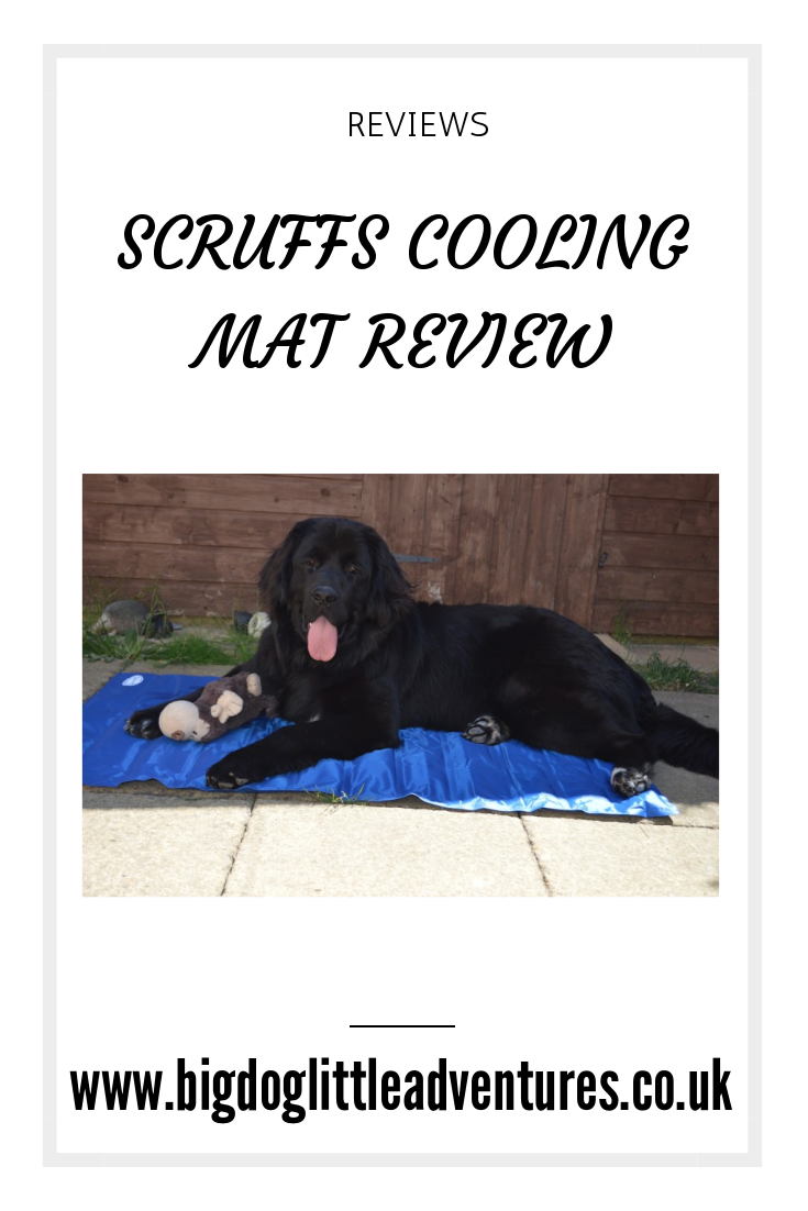During the hot weather, dogs may get over heated and even worse suffer from heatstroke, Newfoundlands are not keen on the hot weather, so the Scruffs Cool Mat was the perfect answer, click through to see what Merrie thought of it.