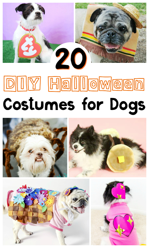 Arte you looking for a cute costume for your lovable pooch, check out these amazing DIY Halloween costumes for dogs to give you inspiration for your favourite furry friend